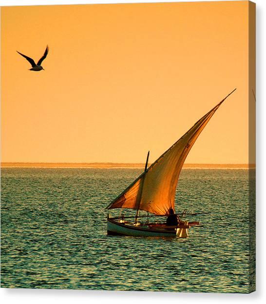 Dhow Canvas Print - Djerba Dawn by John McKinlay