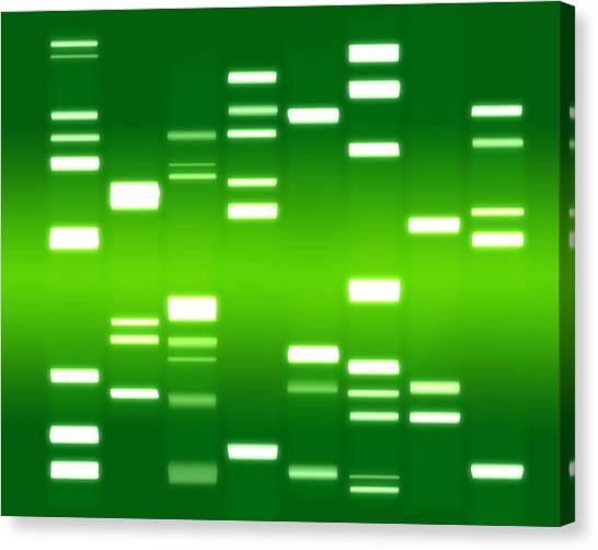 Genetics Canvas Print - Dna Green by Michael Tompsett