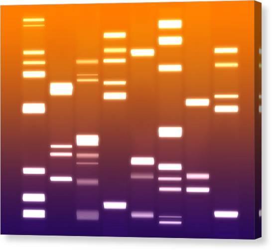 Genetics Canvas Print - Dna Purple Orange by Michael Tompsett