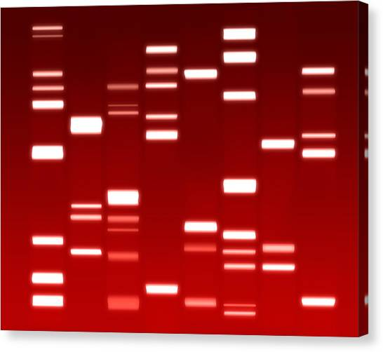 Biology Canvas Print - Dna Red by Michael Tompsett