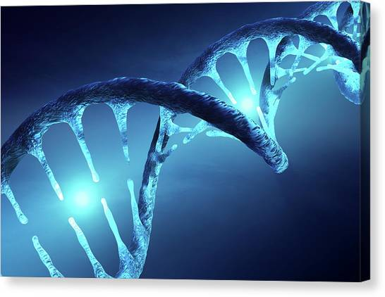 Biochemistry Canvas Print - Dna Structure Illuminated by Johan Swanepoel
