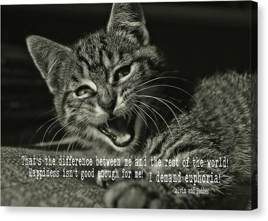 Do Not Start With Me Quote Canvas Print by JAMART Photography