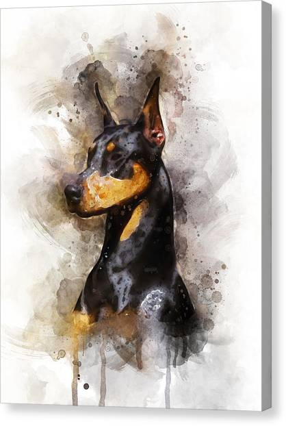 Doberman Pinschers Canvas Print - Doberman by Aged Pixel