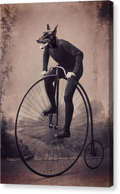 Doberman Pinschers Canvas Print - Doberman Velocipede by Aged Pixel