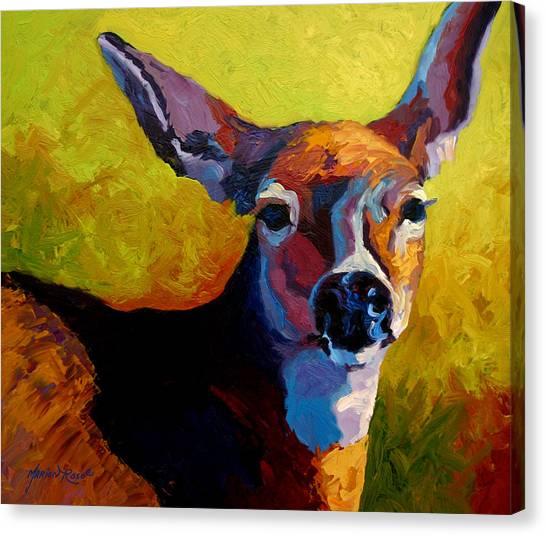 Buck Canvas Print - Doe Portrait V by Marion Rose