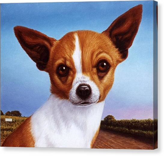 Chihuahua Canvas Print - Dog-nature 3 by James W Johnson