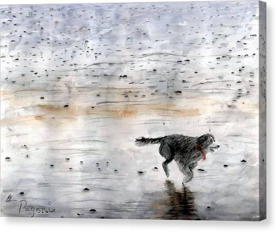 Dog On Beach Canvas Print