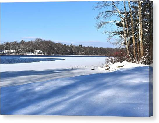 Dog Pond In Winter 1 Canvas Print