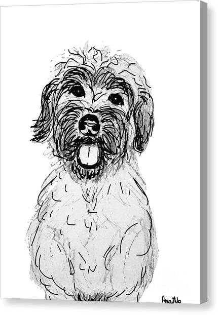 Ania Milo Canvas Print - Dog Sketch In Charcoal 6 by Ania M Milo