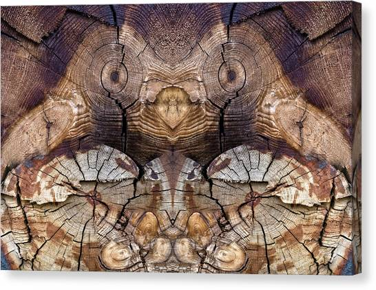 Dog-wood Owl Canvas Print