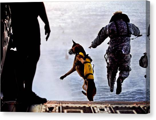 Special Forces Canvas Print - Military Working Dog by JC Findley