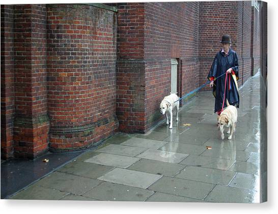 Doggie  Strolling 2 Canvas Print by Jez C Self