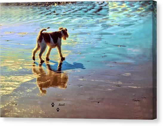 Doggone Beachy Day Canvas Print