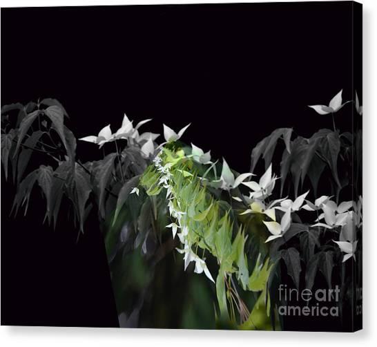 Dogwood Shades Of Grey Canvas Print
