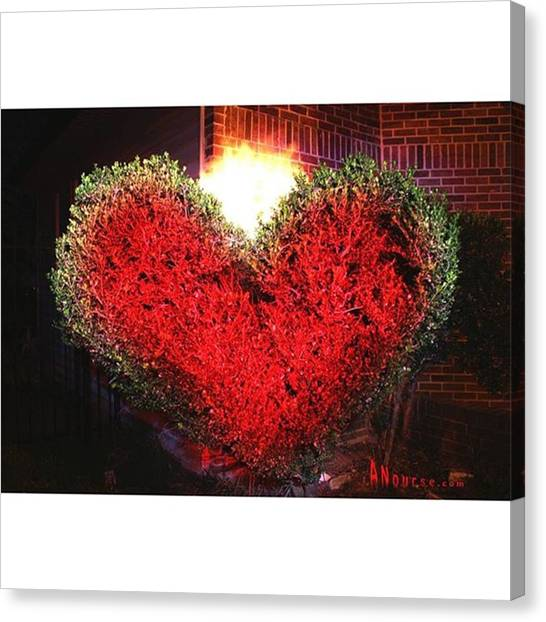 Hearts Canvas Print - Doing Our 'lil Part With Art To Spread by Andrew Nourse