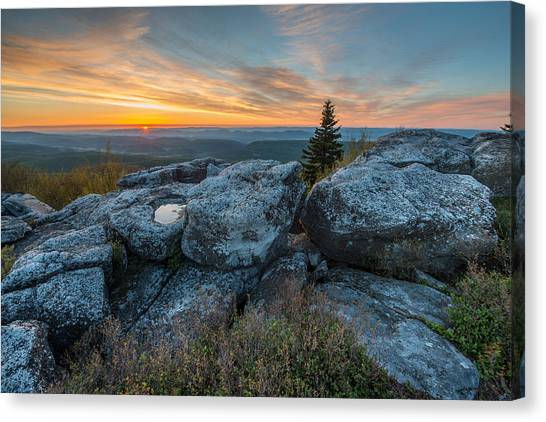 Monongahela National Forest Dolly Sods Wilderness Sunrise Canvas Print