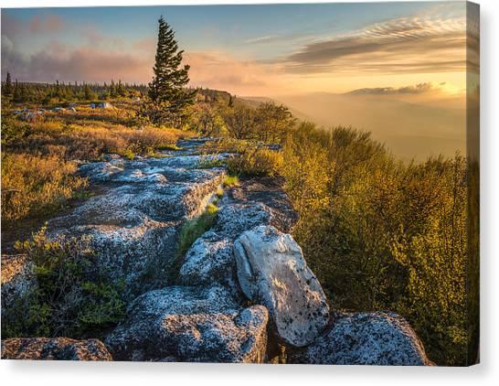 Monongahela National Forset Dolly Sods Wilderness Canvas Print