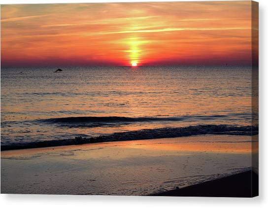 Dolphin Jumping In The Sunrise Canvas Print