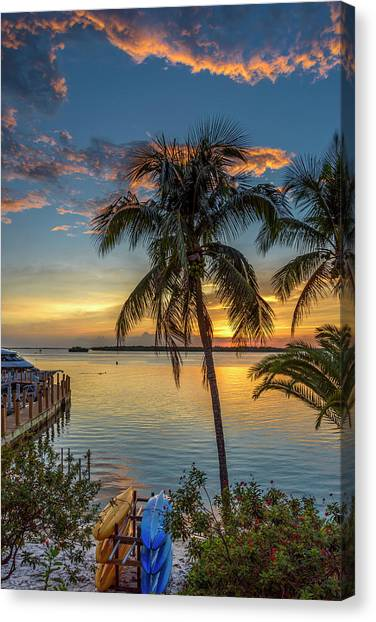 Canvas Print featuring the photograph Dolphins In San Carlos Bay by Steven Sparks