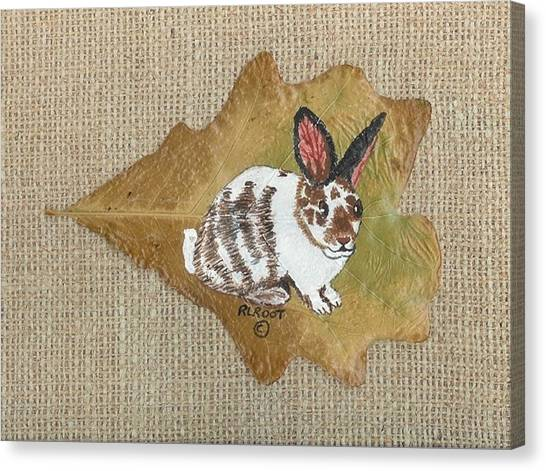 domestic Rabbit Canvas Print