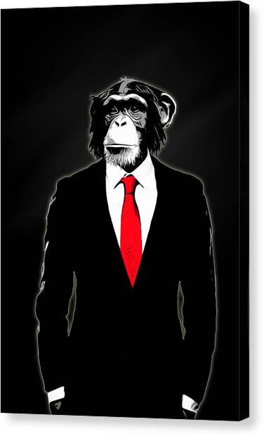 Monkeys Canvas Print - Domesticated Monkey by Nicklas Gustafsson