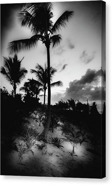 Dominicana Beach Canvas Print