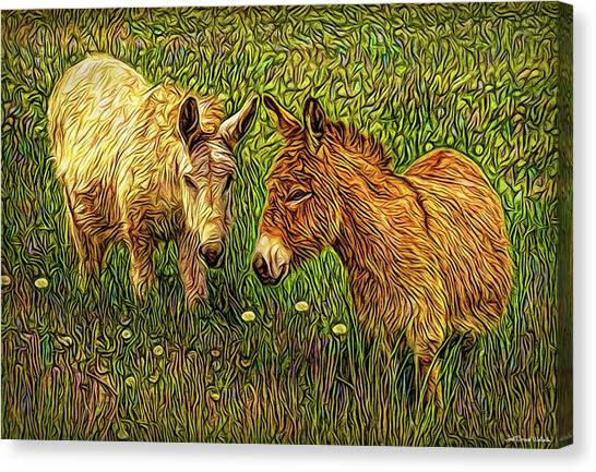 Donkey Confidential Canvas Print
