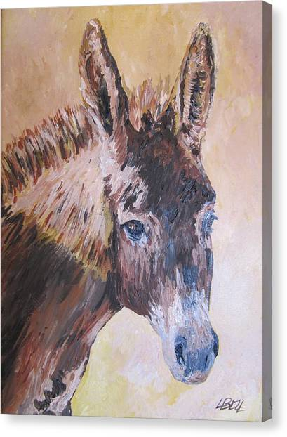 Donkey In The Sunlight Canvas Print by Leonie Bell