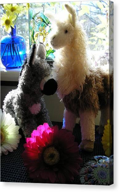 Donkey Joti And Dali Llama Canvas Print by Christina Gardner