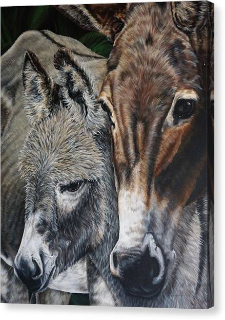 Donkies Canvas Print