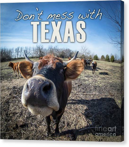 Don't Mess With Texas Canvas Print