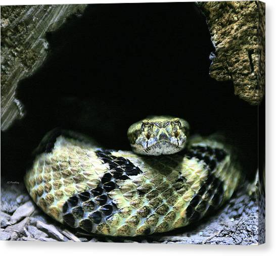 Poisonous Snakes Canvas Print - Don't Tread On Me by JC Findley