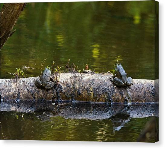 Don't You Love Mornings Like This Canvas Print