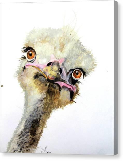 Emus Canvas Print - Doris by Katharine Schafer