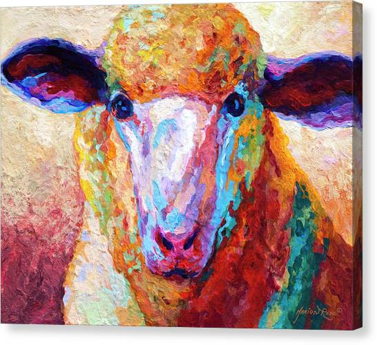Ewe Canvas Print - Dorset Ewe by Marion Rose