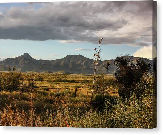 Dos Cabezas Grasslands At Dusk Canvas Print