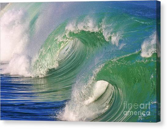 Double Barrel Canvas Print
