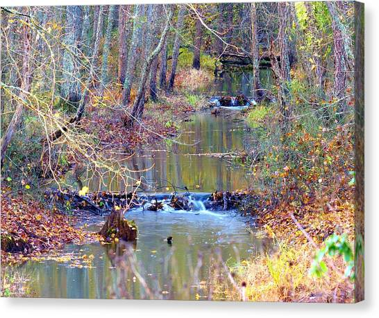 Double Falls Canvas Print