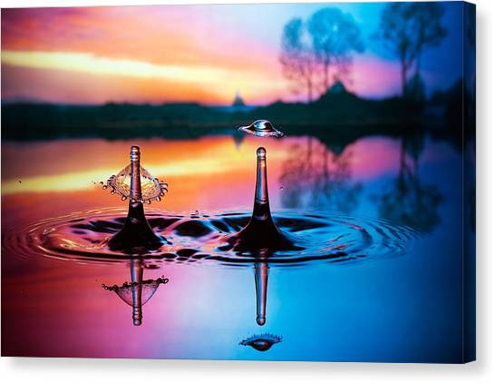 Double Liquid Art Canvas Print
