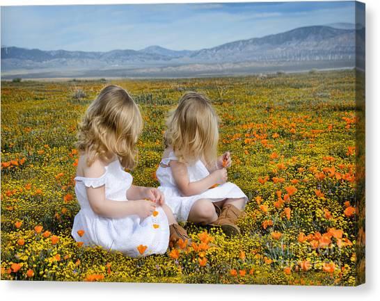 Double Take In A Poppy Field Canvas Print