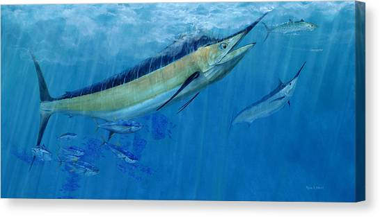 Double Up Marlins Canvas Print