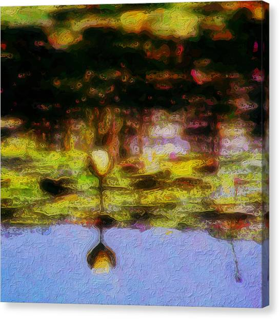 Canvas Print - Double Waterlily by Modern Art