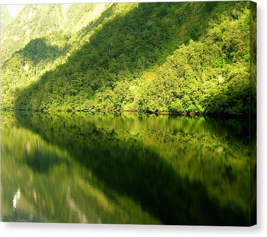 Doubtful Sound, New Zealand No. 4 Canvas Print