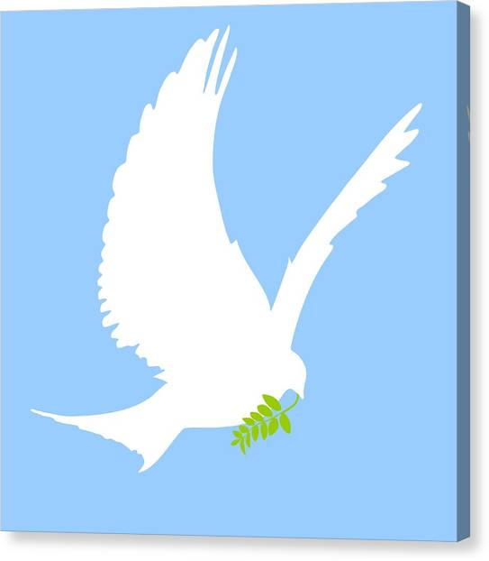 Dove Canvas Print - Dove And Olive Branch by Colette Scharf