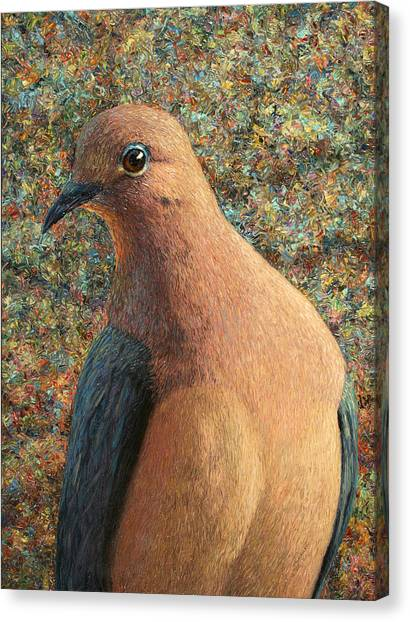 Dove Canvas Print - Dove by James W Johnson