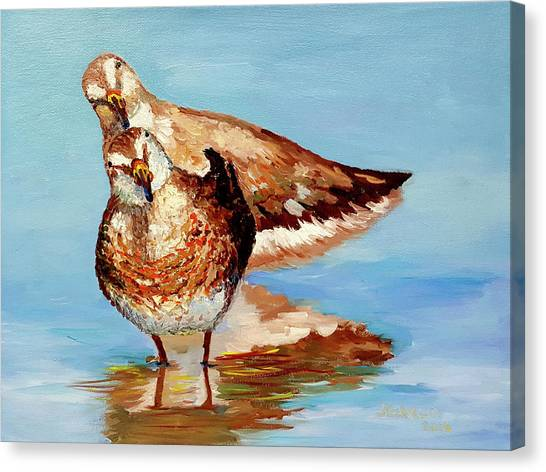 Dowitcher Birds Canvas Print