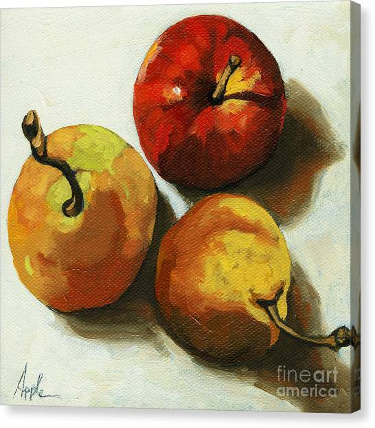 Down On Fruit - Pears And Apple Still Life Canvas Print