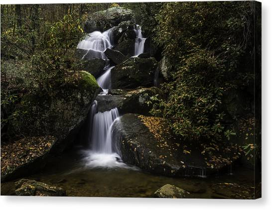 Down Stream Canvas Print
