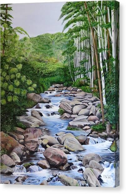 Down Stream  Canvas Print