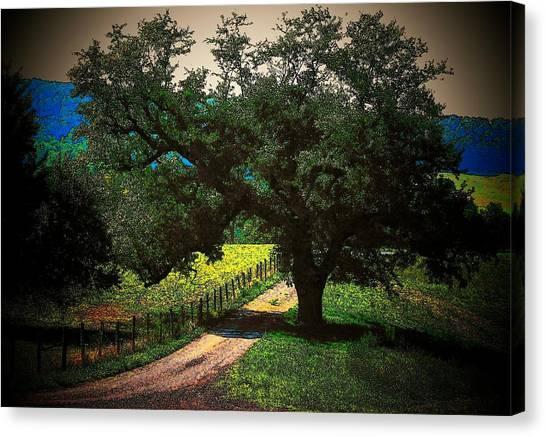 Down The Lane Canvas Print by Joyce Kimble Smith